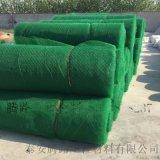 綠化四層三維植被網 騰路廠家直銷三維植被網墊