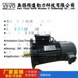變頻電機Y2VP-180M-2-22KW廠家直銷