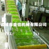 四川保鮮花椒全套加工機器——花椒清洗機 花椒殺青機