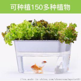 小型迷你智慧生態 魚菜共生亞克力懶人免換水桌面魚缸