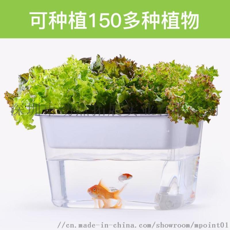 小型迷你智能生态 鱼菜共生亚克力懒人免换水桌面鱼缸