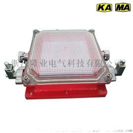 真金品质本安型LED支架灯隔爆型