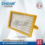 免维护LED防爆灯LED免维护防爆泛光灯