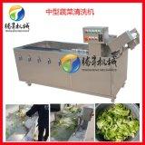 果蔬消毒清洗機 火龍果/人蔘清洗機 連接清洗生產線