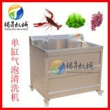 定做果蔬小型气泡清洗机 商用超声波洗菜机
