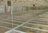 钢格栅吊顶 热镀锌钢格板格栅板