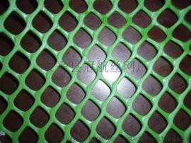 塑料平网 养殖网 养鸡网  养鸭网