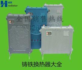 铸铁换热器 家用过水热 免费享用热水 集中供暖专用