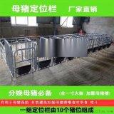 養豬設備廠家長期供應現代化母豬定位欄 保胎限位欄超低價格出售