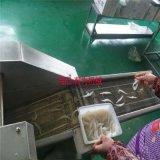 多春鱼上浆机 小银鱼裹浆机 面包虾裹糠机