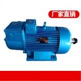 YJZR2 52-8/30KW起重電機 質保一年