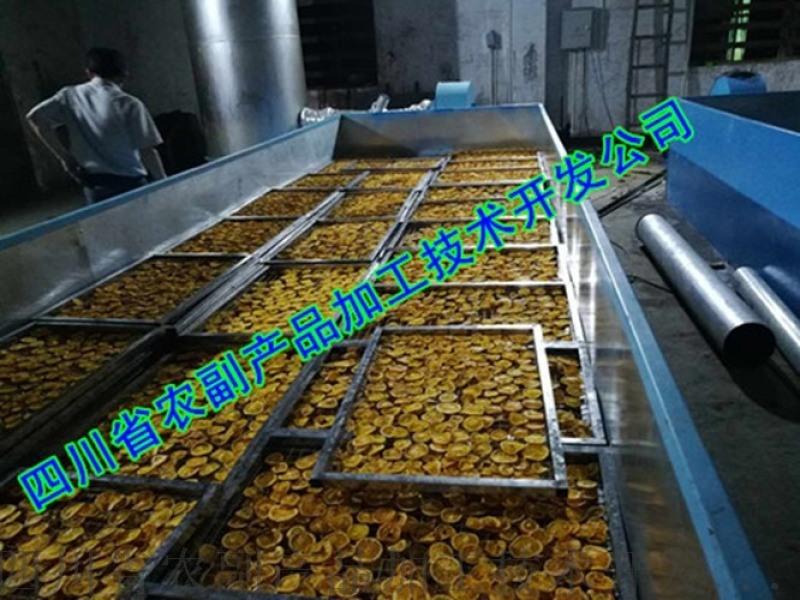 青柠檬烘干机,万州柠檬快速干燥机