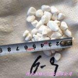 厂家直销6-9mm天然白色鹅卵石 纯白天然鹅卵石