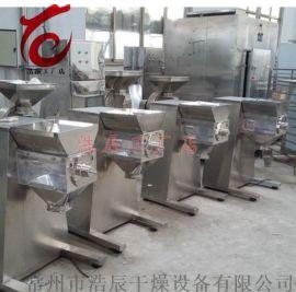 新品yk60摇摆式颗粒机 制药机械 板蓝根冲剂设备 上海厂家直销