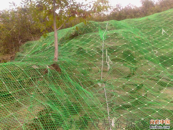 边坡防护网_SNS主被动防护网_钢丝绳网生产厂家