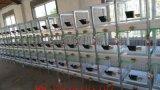 兔笼子厂家直销 清粪带式兔笼子 新型子母兔笼产品