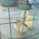 塑料平网 养鸡鸭鹅专用网 白色塑料网经久耐用