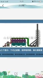 废气处理催化燃烧设备工作原理 ,山东绿岛