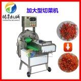 多功能蔬菜切菜機 商用切片切段 可調變頻器切菜機