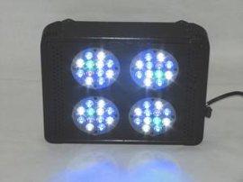 调光LED水族灯