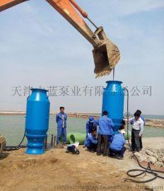 潛水軸流泵、QZB潛水軸流泵廠家、攜帶型潛水軸流泵