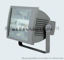 GT002-L400壁挂式防水防尘防震泛光灯