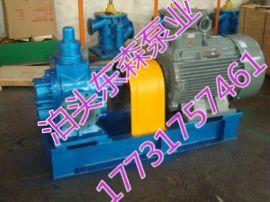 江苏东森泵业不锈钢圆弧齿轮泵
