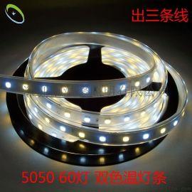 新款 LED5050贴片灯带 双色温防水灯条 可调色温 冷暖白12V 高亮