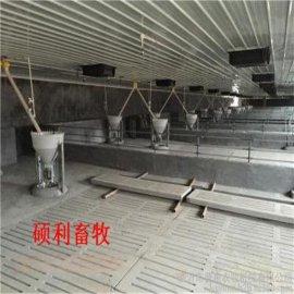 碩利牌電動喂料機食槽自動下料系統乾溼喂料器批量生產