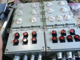 防爆配電箱 廠家批發 BXMD系列 防爆儀表箱