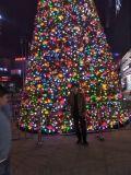 河南鄭州戶外大型框架聖誕樹生產廠家紅日聖誕