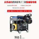 好消息大泽动力TO18000ET 15KW柴油发电机 三相380V 单相220V