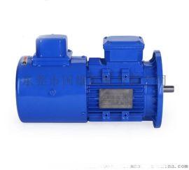 变频电机 带独立风扇 220V~380V任选