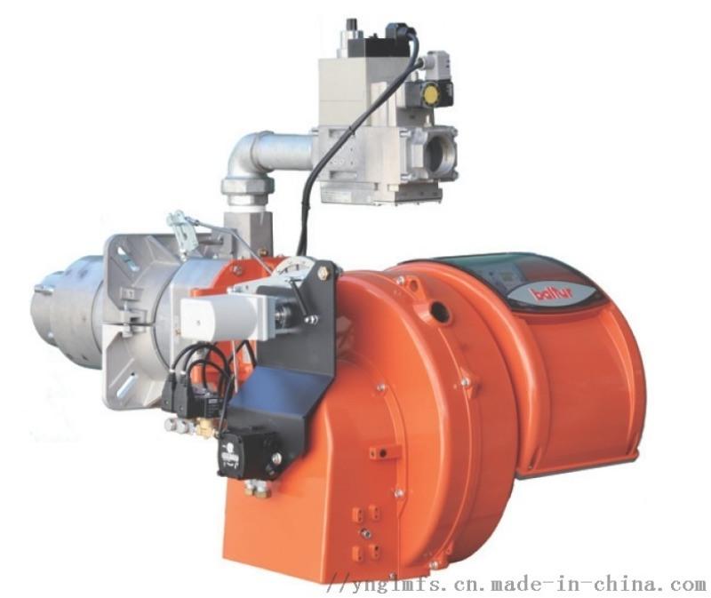 義大利 義大利原裝進口百得30mg低氮燃燒器