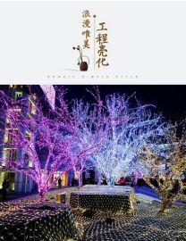 LED灯光秀 工程亮化 灯串灯满天星亮化圣诞灯