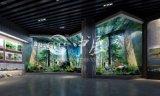 南充博物馆设计 四川小型博物馆设计施工