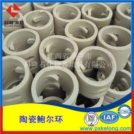 吸收塔用优质陶瓷鲍尔环填料上秞鲍尔环