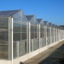 阳光板温室 智能温室 连栋温室设计 温室材料