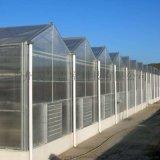 陽光板溫室 智慧溫室 連棟溫室設計 溫室材料