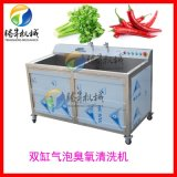 双缸单缸蔬菜洗菜机 食堂酒店消毒气泡洗菜机
