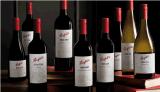 专业进口奔富红酒运输清关,进口红酒运输流程