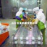 鮑魚速凍機 鮑魚速凍流水線廠家——山東寶星專業