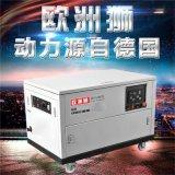 欧洲狮动力12kw静音汽油发电机