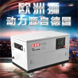 歐洲獅動力12kw靜音汽油發電機