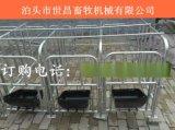 厂家世昌厂家直营母猪定位栏2.1*6.5供10头母猪定位栏保胎价格