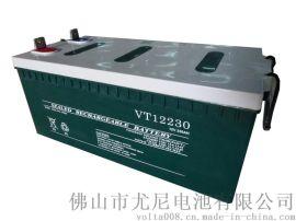 深循环免维护铅酸蓄电池12V230AH