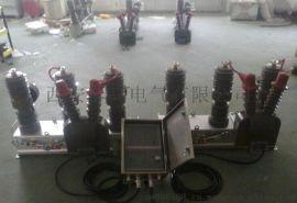 户外10kv高压双电源自动切换开关HZW32-12型