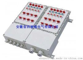 BXM防爆照明动力配电箱IIC级碳钢材质