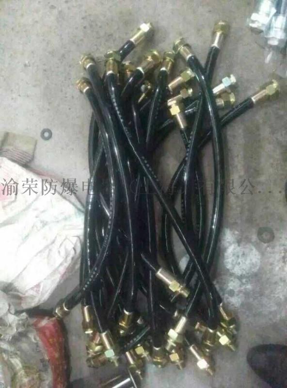 上海渝荣专业BNG粉尘防爆挠性管厂家