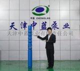 高扬程潜水深井泵 供水工程专用泵